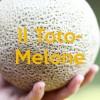 Il Toto-Melone