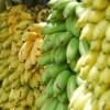 Le Banane
