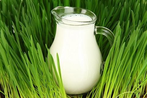 Latte pastorizzato, UHT, alta qualità e microfiltrato