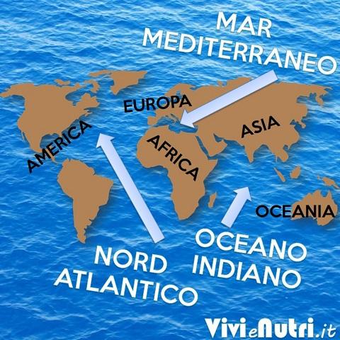 mappa dei mari