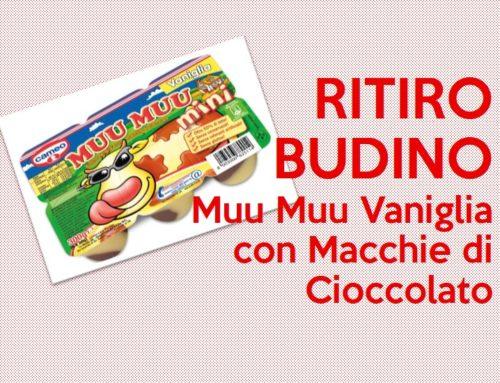 Ritiro Budino