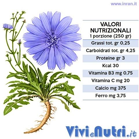 valori nutrizionali della cicoria