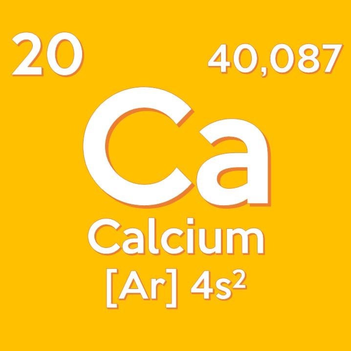 Il calcio è il minerale più abbondante all'interno del corpo umano: circa 1250 gr nell'adulto (2% del peso corporeo).