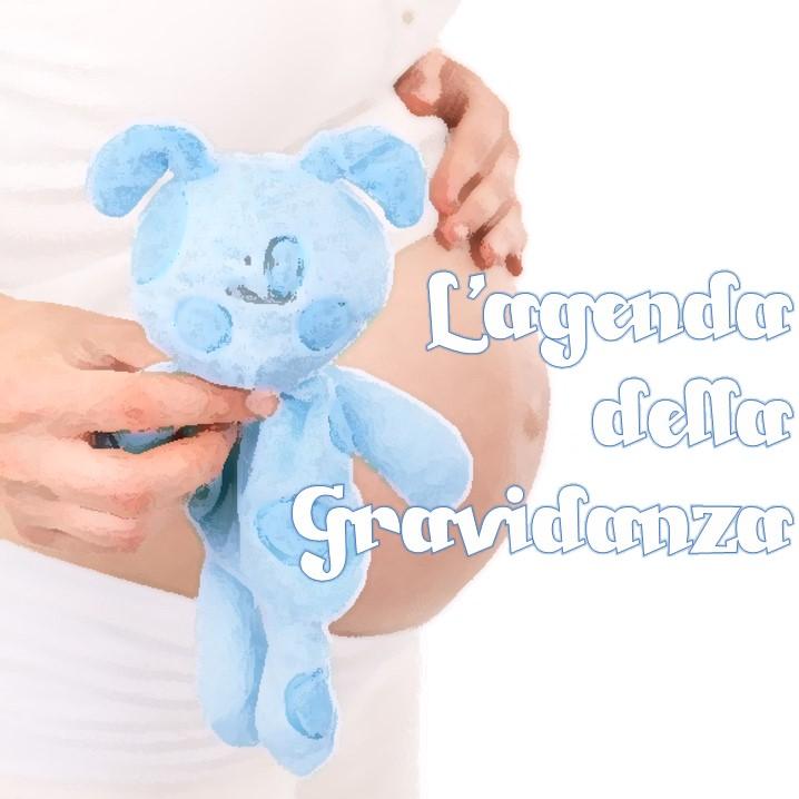 Questa agenda illustra i temi che, trimestre dopo trimestre, la donna in gravidanza si troverà ad affrontare.