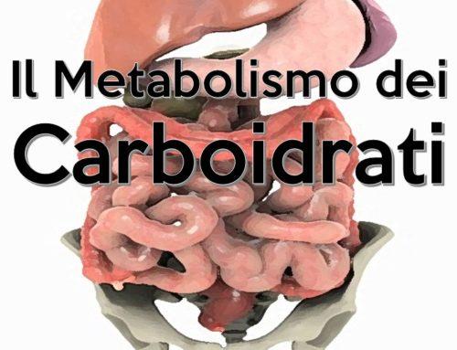 Il Metabolismo dei Carboidrati