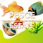 Pesce in Estate