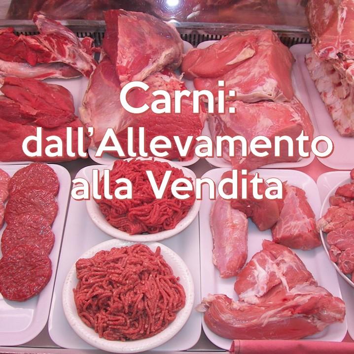 Gli animali destinati al nostro consumo alimentare, dopo essere stati allevati, vengono macellati. Alla macellazione segue la frollatura della carne cioè la sua maturazione.