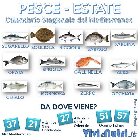 Calendario Stagionale del Mediterraneo