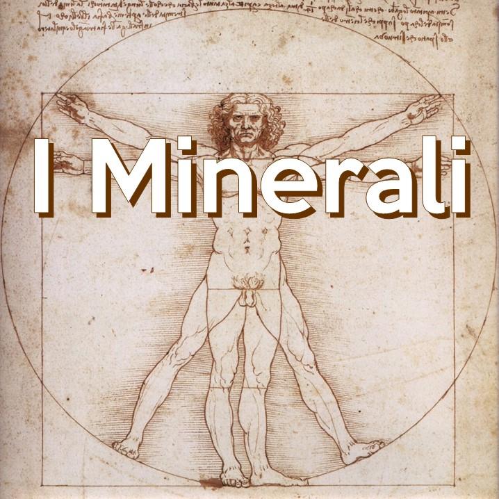 I minerali sono nutrienti inorganici, privi di calorie, indispensabili per il benessere dell'uomo; alcuni di questi, sono presenti in quantità talmente basse da essere difficili da quantificare.