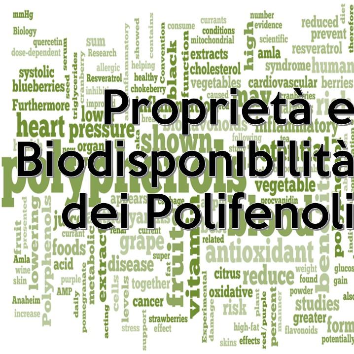 I polifenoli sono un grande gruppo di composti di origine vegetale con importanti funzioni all'interno del nostro corpo. Sono responsabili, insieme ad altri composti, della colorazione di diversi frutti, ma la loro funzione principale è quella di proteggere le piante dalla luce solare e da altri agenti ossidanti.