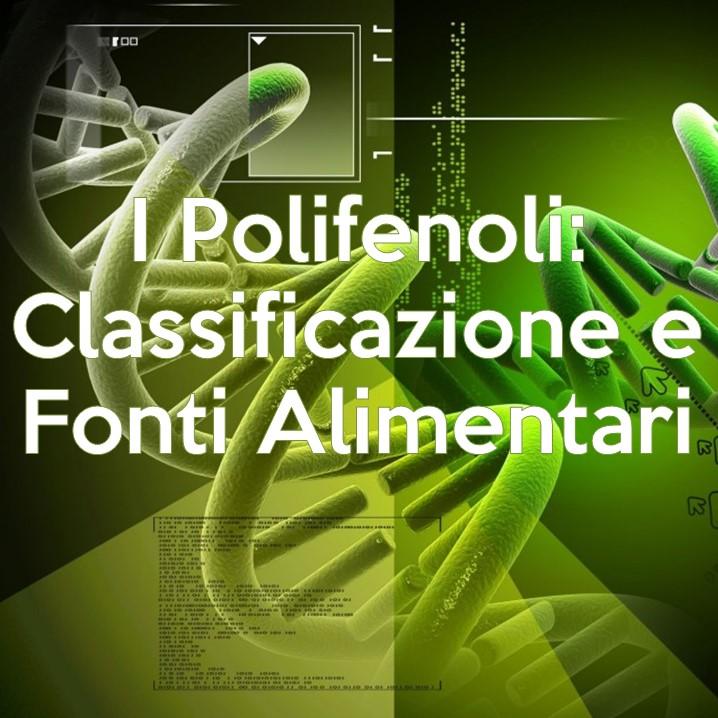 Flavonoidi, Antocianine, Catechine, Curcumina, Lignani, Non Flavonoidi, polifenoli, classificazione, fonti alimentari, proprietà, Resveratrolo