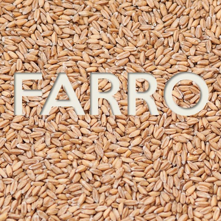 Il Farro: proprietà e valori nutrizionali