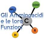 Gli Amminoacidi e le loro Funzioni