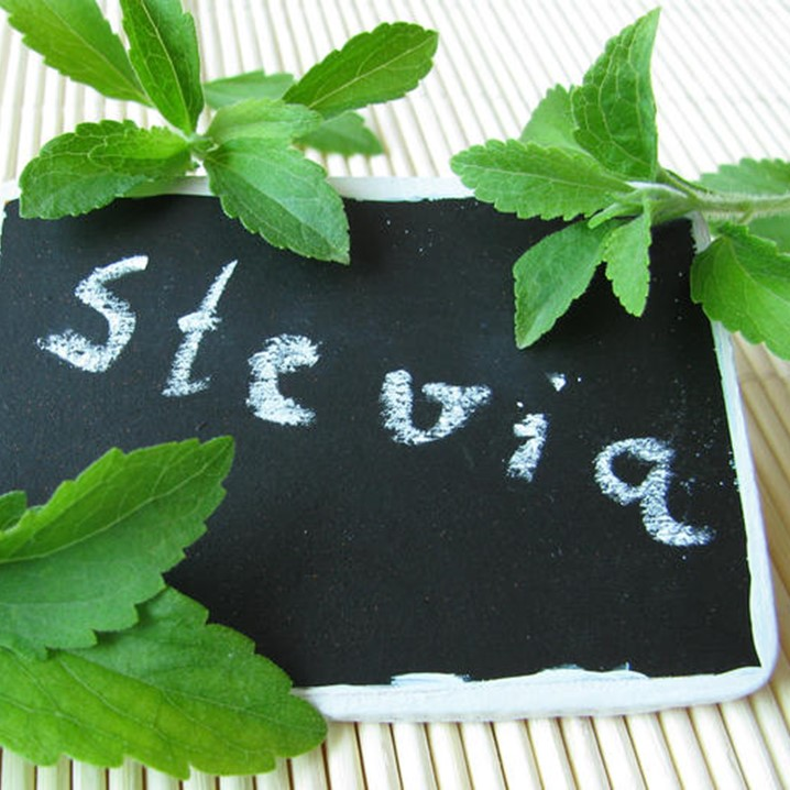 Stevia il dolcificante naturale for Stevia pianta