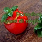 Pomodori ripieni di miglio