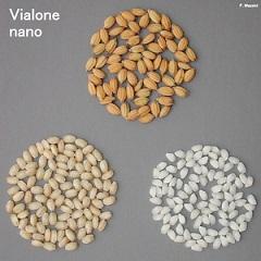 Vialone Nano_.JPG_3834