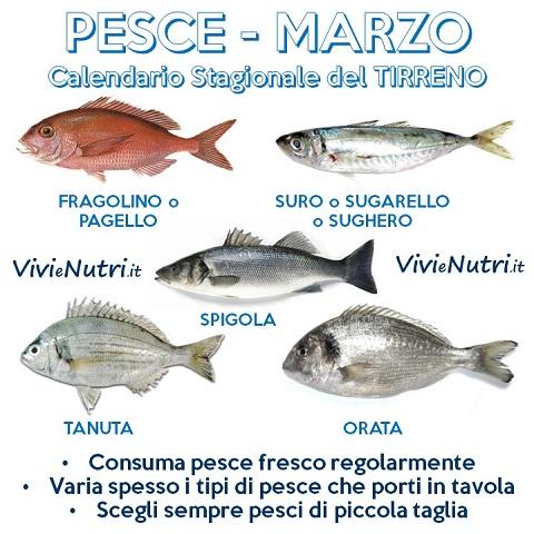 Pesce a marzo - Pagina di colorazione del pesce ...