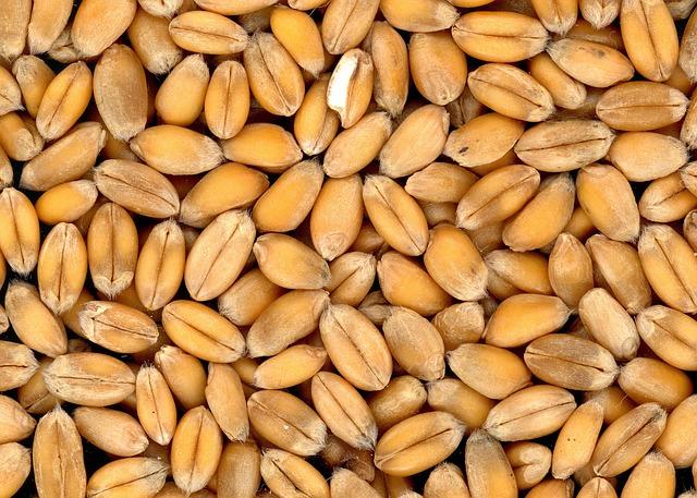 cereali come cucinarli