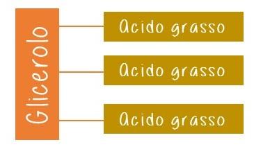 oli-vegetali-vivienutri1